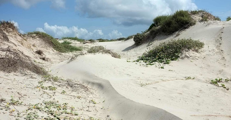 How Long Do Dunes Last Dune Science